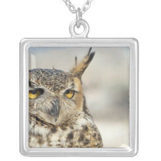 Great Horned Owl (Bubo virginianus), captive Silver Plated Necklace