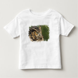 Great Horned Owl, Bubo virginianus, Captive Toddler T-Shirt