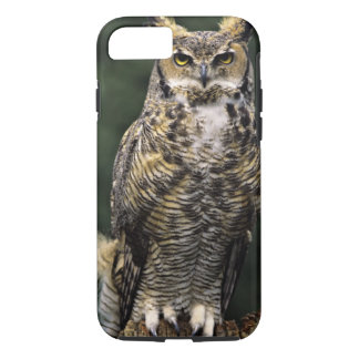 Great Horned Owl (Bubo virginianus), full body iPhone 8/7 Case
