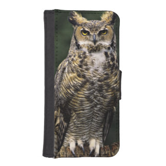 Great Horned Owl (Bubo virginianus), full body iPhone SE/5/5s Wallet Case