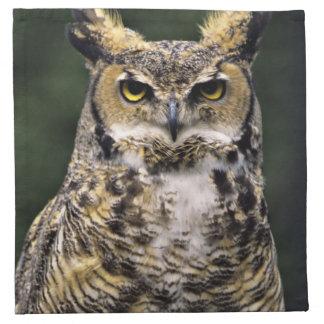Great Horned Owl (Bubo virginianus), full body Napkin