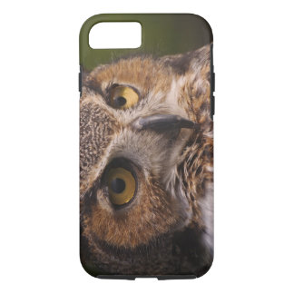 Great Horned Owl, Bubo virginianus iPhone 8/7 Case