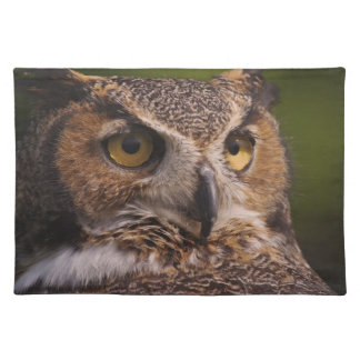 Great Horned Owl, Bubo virginianus Place Mats