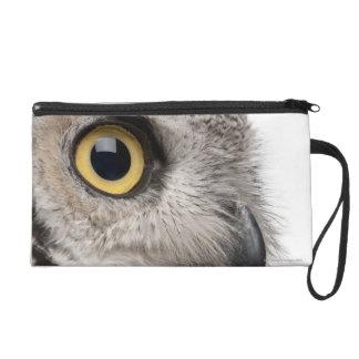 Great Horned Owl - Bubo Virginianus Subarcticus Wristlet