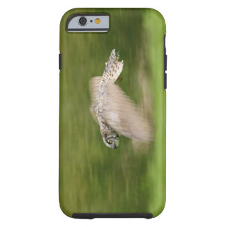 Great Horned Owl (Bubo virginianus) Tough iPhone 6 Case