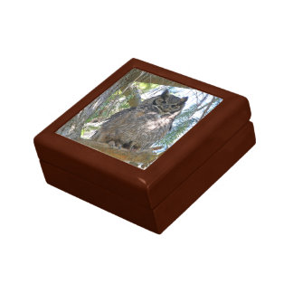 Great Horned Owl Gift Box