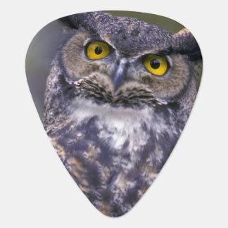 Great Horned Owl Guitar Pick