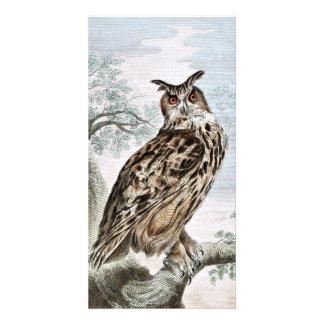 Great Horned Owl Illustration Photo Card