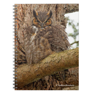 Great Horned Owl in the Douglas Fir Notebooks