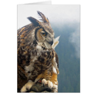 Great Horned Owl Note Card
