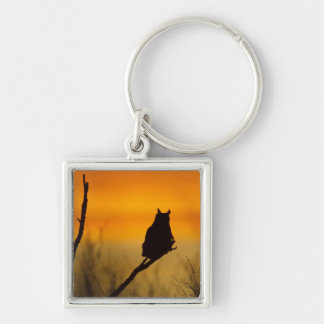 Great Horned Owl perched at sunset Silver-Colored Square Key Ring