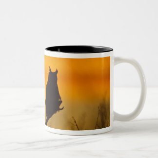 Great Horned Owl perched at sunset Two-Tone Coffee Mug
