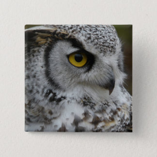 Great Horned Owl Photograph 15 Cm Square Badge