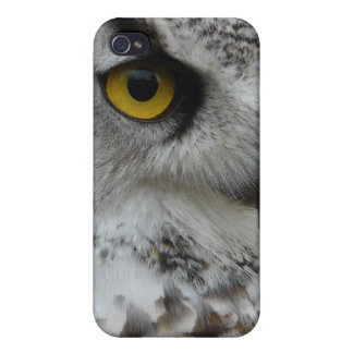 Great Horned Owl Photograph Cases For iPhone 4