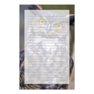 Great Horned Owl Stationery Design