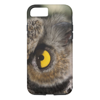 great horned owl, Stix varia, Alaska Zoo, iPhone 7 Case