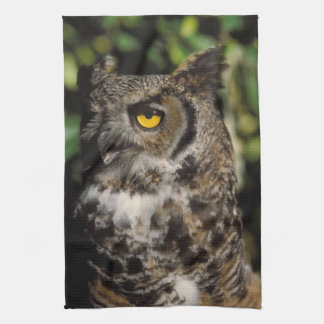 great horned owl, Stix varia, in the Anchorage Tea Towel