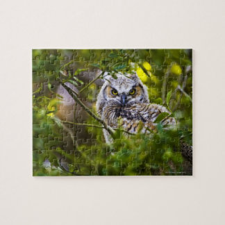 Great Horned Owlet Jigsaw Puzzle