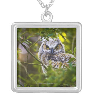 Great Horned Owlet Silver Plated Necklace
