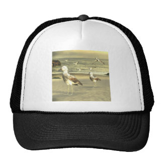 Great Knot Hats