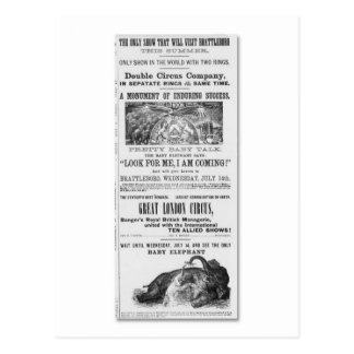 Great London Circus Advertisement Postcard