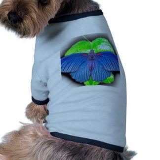 Great Mormon Butterfly Doggie Shirt