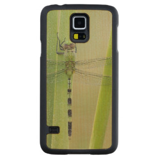 Great Pondhawk , Erythemis vesiculosa, adult Carved Maple Galaxy S5 Case