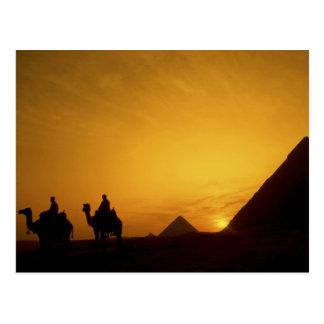 Great Pyramids of Giza, Egypt at sunset Postcard