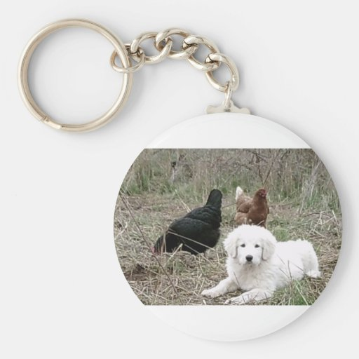Great Pyrenees puppy with free range chickens Keychains