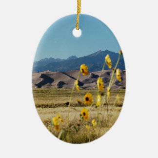 Great Sand Dunes and Flowers Christmas Ornament
