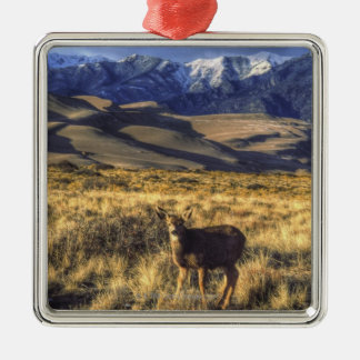 Great Sand Dunes National Park, Colorado Christmas Ornament