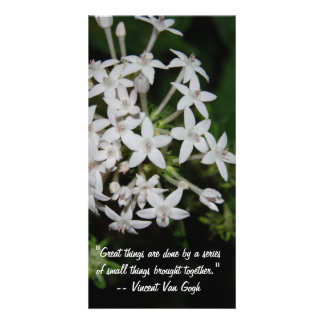 Great sayings and Quotes- White flowers Photo Cards