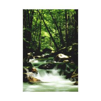 Great Smokey Mountains River Canvas Print