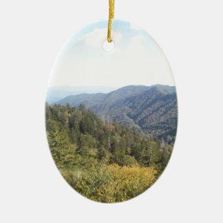 Great Smoky Mountain Vista 1 Ornaments