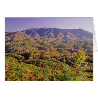 Great Smoky Mountains NP, Tennessee, USA Card