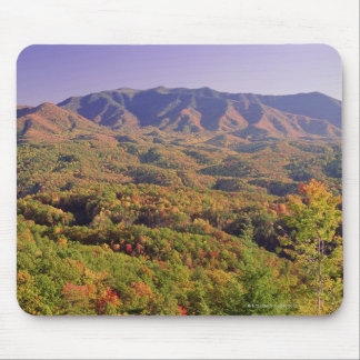 Great Smoky Mountains NP, Tennessee, USA Mouse Pad