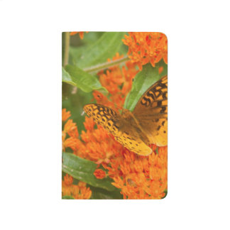 Great Spangled Fritillaries on Butterfly Milkweed Journal