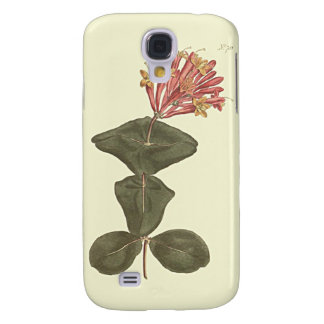 Great Trumpet Honeysuckle Botanical Illustration Galaxy S4 Case