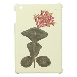 Great Trumpet Honeysuckle Botanical Illustration iPad Mini Case