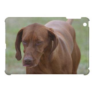 Great Vizsla Dog Case For The iPad Mini