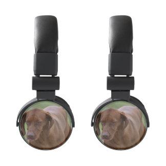 Great Vizsla Dog Headphones