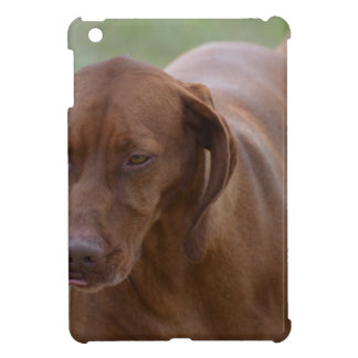 Great Vizsla Dog iPad Mini Case