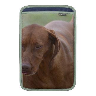 Great Vizsla Dog Sleeve For MacBook Air
