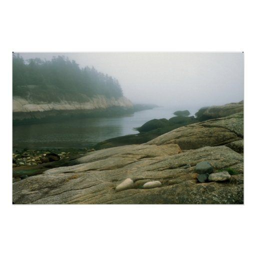 Great Wass Island shore cove Poster