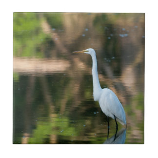 Great White Egret Tile
