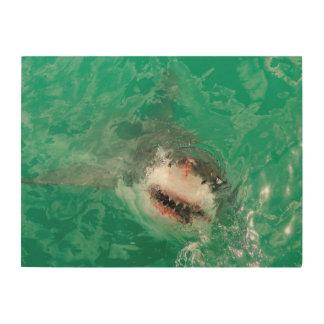 Great White Shark1 Wood Wall Art