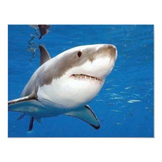 Great White Shark 11 Cm X 14 Cm Invitation Card