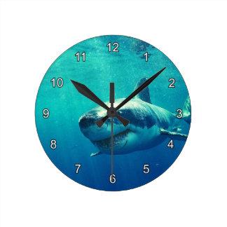 GREAT WHITE SHARK 1 ROUND CLOCK