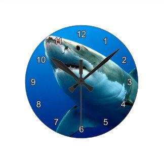 GREAT WHITE SHARK 3 WALLCLOCKS