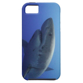 Great White Shark IPhone 5 Case